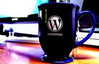 WordPress安装更新删除插件主题时需要FTP用户名密码