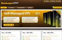 BandwagonHost:$9.99年付/OpenVZ-512MB/5GB RAID-10/500GB 3数据中心
