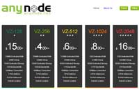 anyNode:$25年付/OpenVZ-512MB/40GB/1TB 底特律